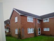 Studio flat to rent in Fisher Road, Diss...