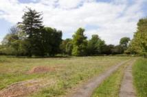 Plot 1 Land for sale