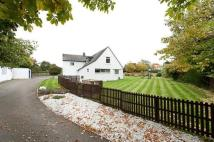 Detached home for sale in Thrushes Mead...