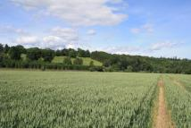 Land in Farmland At Old Keir for sale