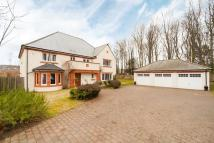5 bed Detached property in Lewa, Baillie Court...