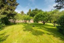 Land for sale in Lugton House Plot...