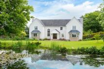Detached property in Curling Pond House...