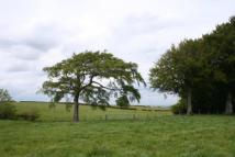 Land for sale in Lot 6: Heads Farm...