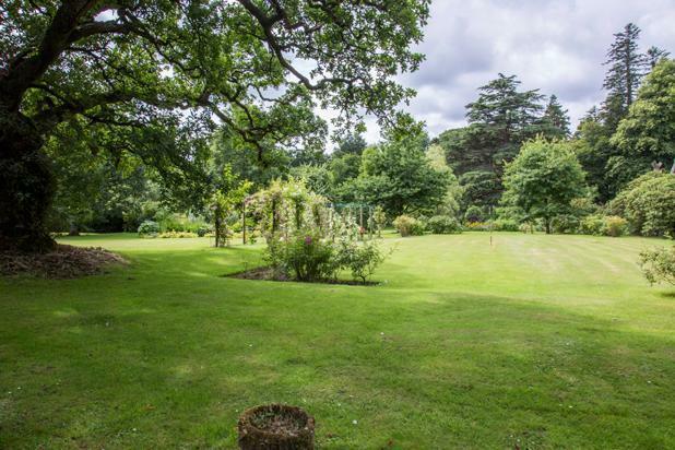 Croquette Lawn