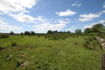 home for sale in Lot 4:  Paddock/Grazing...