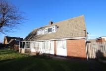 Semi-Detached Bungalow to rent in HELMSLEY LAWN, Redcar...