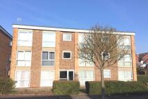 2 bed Flat to rent in Sedlescombe Gardens...