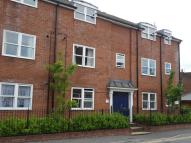 Flat to rent in Salisbury Road...