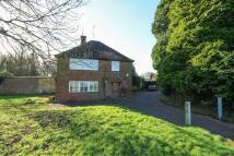 Detached house to rent in Wardour, Tisbury