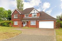 5 bedroom Detached property to rent in Mayes Close, Warlingham...