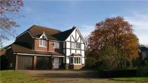 5 bed Detached property to rent in Foxon Close, Caterham...