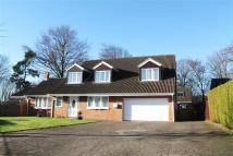 5 bedroom Detached property for sale in Whitby Drive, Biddick...
