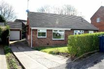 Semi-Detached Bungalow to rent in Muirfield Drive, Usworth...