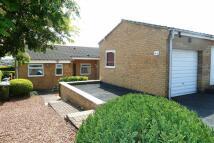 2 bedroom Semi-Detached Bungalow in Donridge, Donwell...