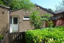1 bed Semi-Detached Bungalow to rent in Julian Court, Glenrothes...