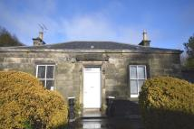 Detached Bungalow to rent in Northall Road, Markinch...
