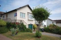 3 bed Bungalow to rent in Whitear Close, Teignmouth