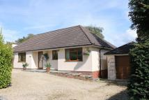 4 bed Detached Bungalow in Sixty Acres Close...