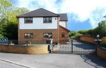 Detached house in Brynhawddgar...