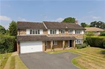 5 bedroom Detached property to rent in Ashcroft Park, Cobham...