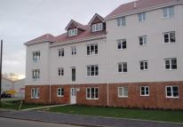 Paisley Flat to rent