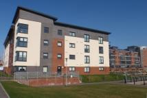 new Flat to rent in Cardon Square...