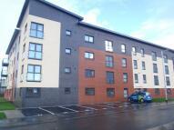Cardon Square  new Flat to rent