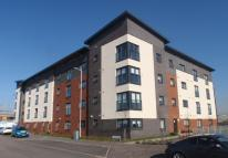 new Flat in Cardon Square  - Ferry...