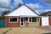 Bungalow to rent in Greengate, Hutton...