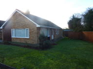 Detached Bungalow to rent in Hethersett