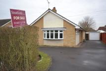 3 bed Detached Bungalow to rent in Hethersett