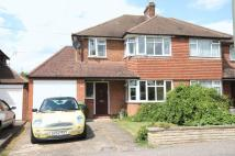 3 bed semi detached house to rent in Petters Road, ASHTEAD