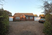 Detached Bungalow in The Copse, LEATHERHEAD