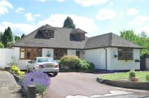 Detached Bungalow in Grangemount, Leatherhead...