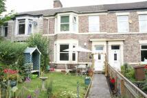 Flat for sale in Preston Terrace...