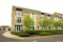 2 bed Flat to rent in Brandling Court...