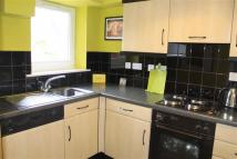 Dolphin Quay Flat to rent