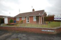 2 bedroom Detached Bungalow in Scargate Close...