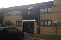 Mulberry Close Flat to rent