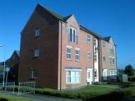 2 bed Flat in Burdock Way, Desborough...