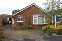 2 bedroom Detached Bungalow for sale in Thornton Close...
