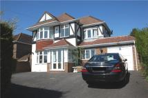 5 bedroom Detached property to rent in Surrenden Road, Brighton...