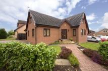 4 bedroom Detached home in 21 Herbison Court, ...