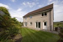 5 bedroom new development for sale in 'The Culross',...
