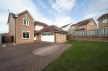 4 bedroom Detached Villa in 21 Wilson Place...