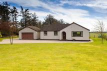 3 bed Bungalow for sale in Green Acres Tarbatness...
