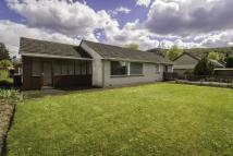 Dunavon Kendrum Park Bungalow for sale