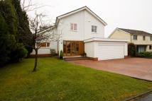4 bedroom Detached property for sale in 23 Inglewood Crescent...