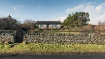 Bungalow for sale in Borgue, Berriedale...